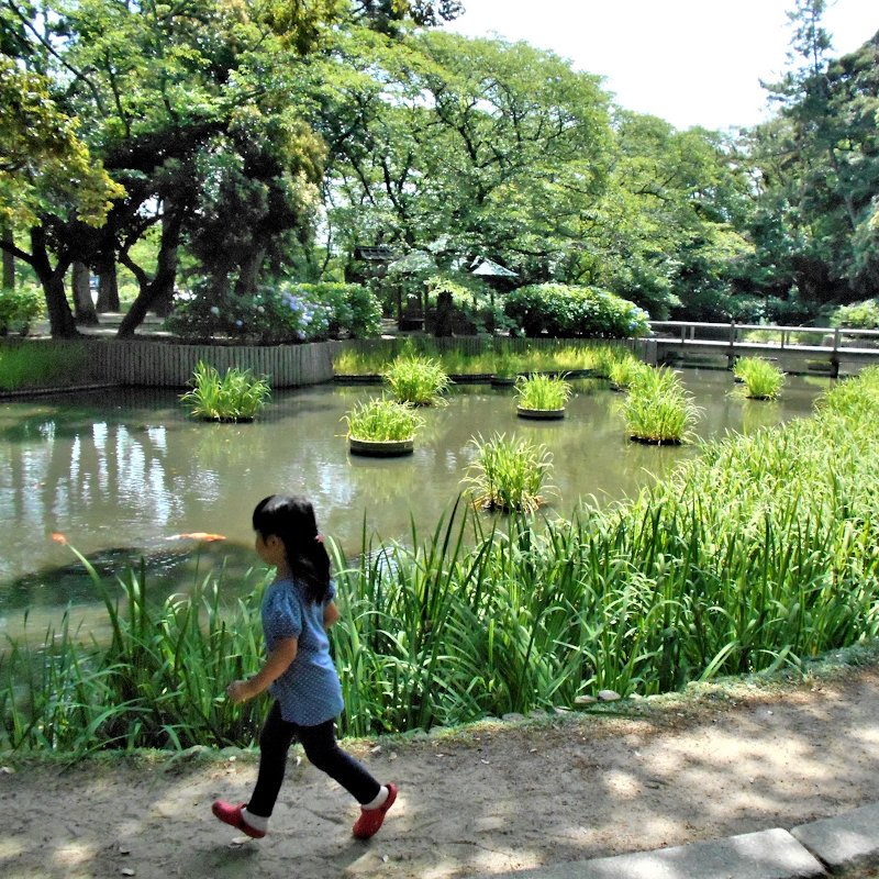 matsue_izumo_garden