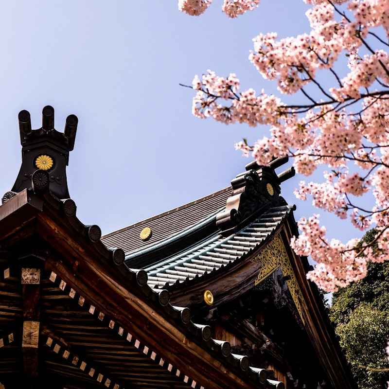 miyajima_sakura_temple